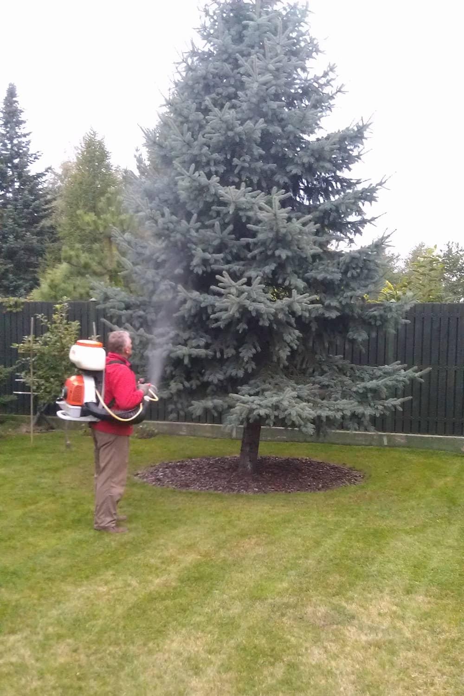 pielegnacja ogrodow img (13)