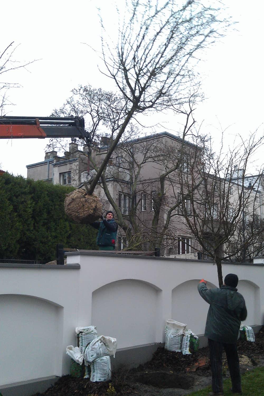 zakladanie-ogrodow-img (6)