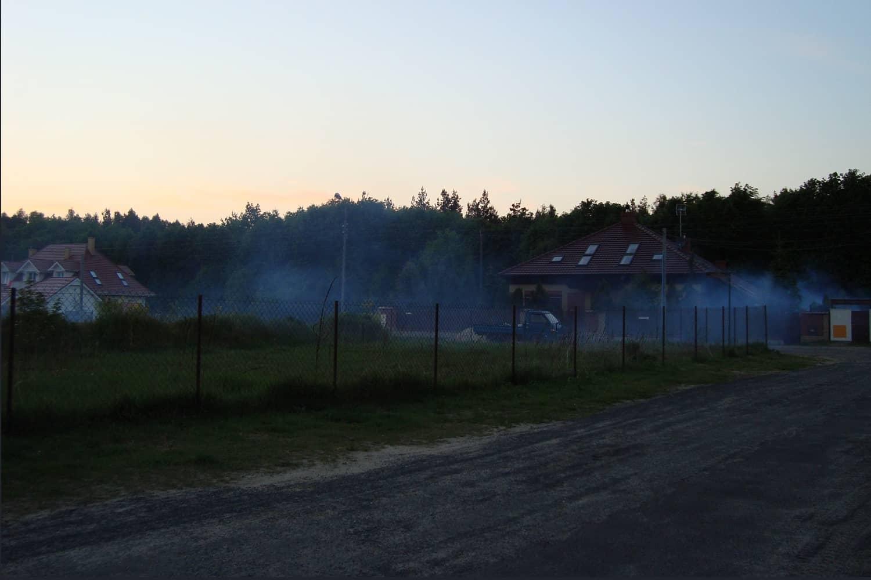 zwalczanie-komarow-img (6)